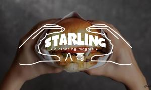 Starling 八哥